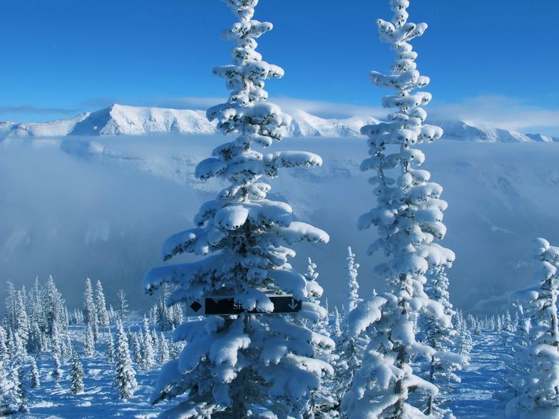 SNOW SNOW SNOW, Castle Mountain Resort