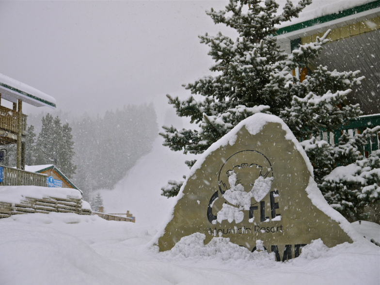 Pow day, Castle Mountain Resort