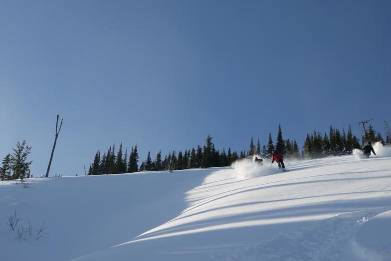 Fresh Lines, Castle Mountain Resort