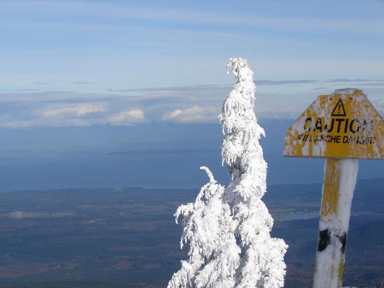 Mount Washington view