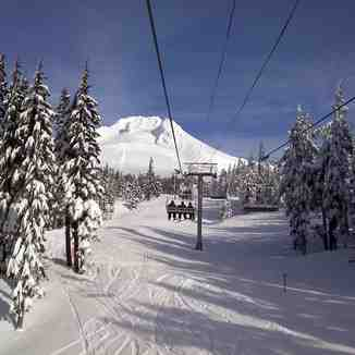 t line, Timberline
