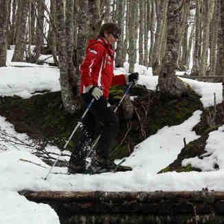 Treking en bosques nevados, Cerro Mirador