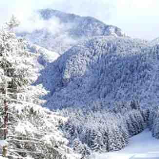 Fresh Snow in Drouzin Le Mont