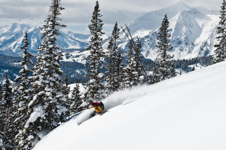 Cover Shot, Irwin Snowcat Skiing