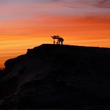 Sunrise on the summit, Tanzania