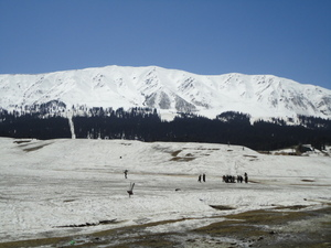 my kashmir, Gulmarg photo