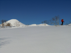 Backcountry Niseko, Niseko Annupuri photo