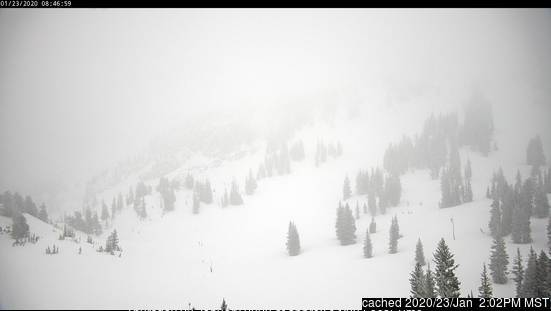 Alta webcam at lunchtime today