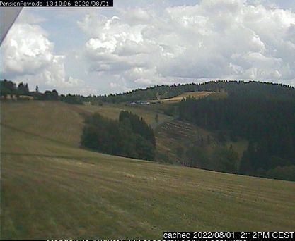 altastenberg webcam