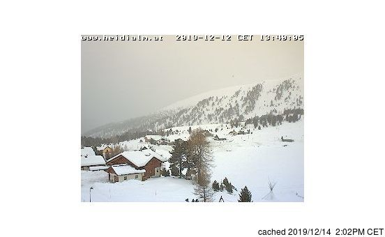 Falkert webcam at lunchtime today