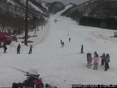 Hakuba Cortina Kokusai webcam at lunchtime today