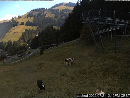 Moléson s/Gruyères webcam at 2pm yesterday
