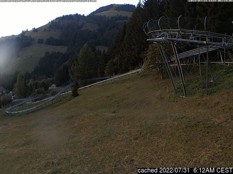 Live webcam per Moléson s/Gruyères se disponibile