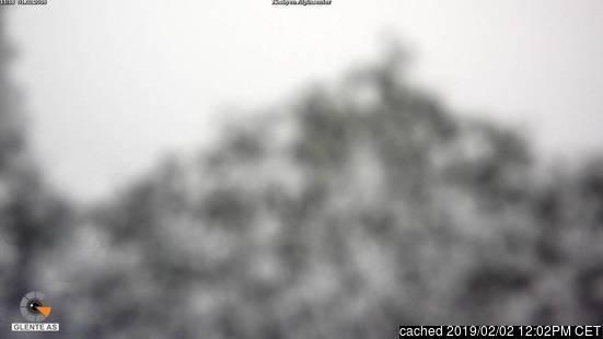 Webcam de Nesbyen a las doce hoy