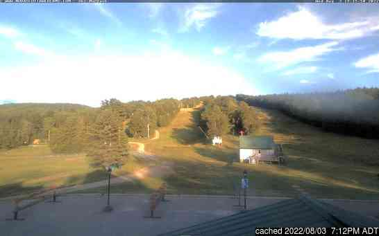 Live webcam per Ski Martock se disponibile