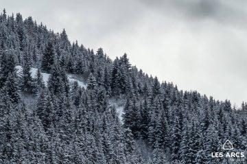 Snowfall Returns to The Alps
