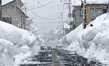 Ski Japan: February update & focus on Hokkaido